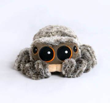 Lucas the Spider Plushie front
